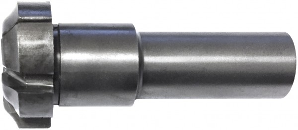 Profilfräser D=30x12x70mm, S=16x35mm 6Z HSS von pwwu